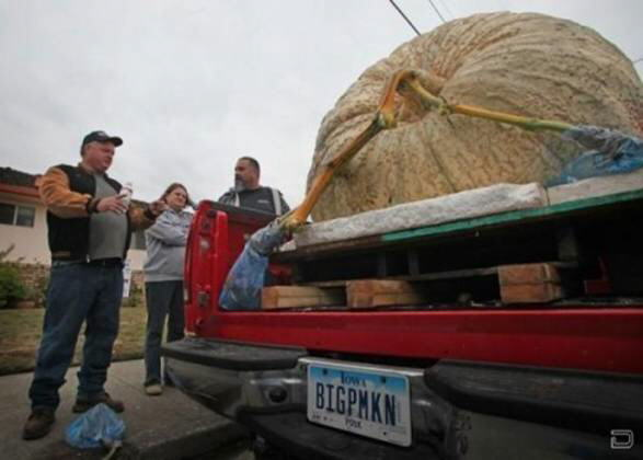 Nothing is Impossible : 750 pound PUMPKIN