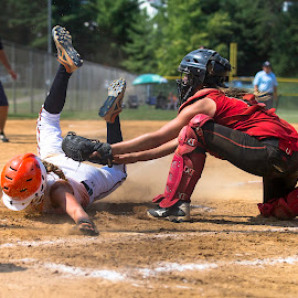 Safe by Adrian Dillenseger - Sports & Fitness Other Sports ( safe, catcher, tag, bases, home plate, softball, slide )