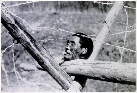 Nanking_masacre