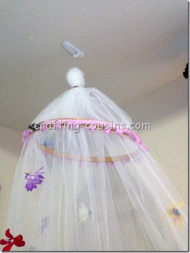 Canopy (3)