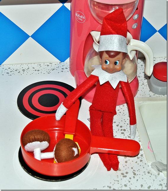 Elf on the Shelf Day 5-9 010