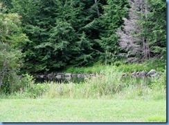 7179 Restoule Provincial Park - walk to Visitor Centre - Restoule River