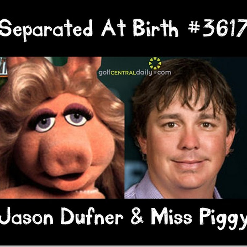 Separated At Birth: Jason Dufner & Miss Piggy