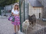 2013.08.20-043 Stéphanie et un akita américain