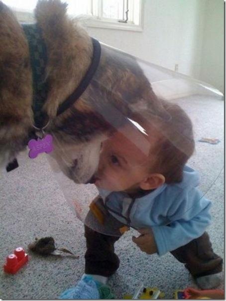 dogs-kids-best-friend-3