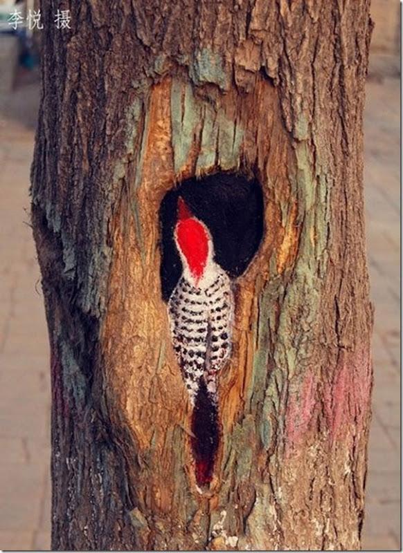Arte nas árvores (9)