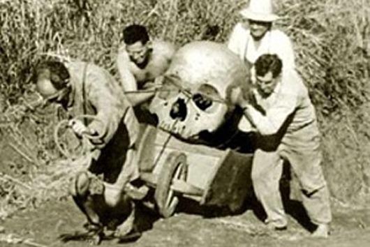 skull-pic4-452x302-61773[4]
