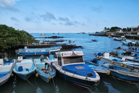 Imagini Galapagos: Puerto Ayora