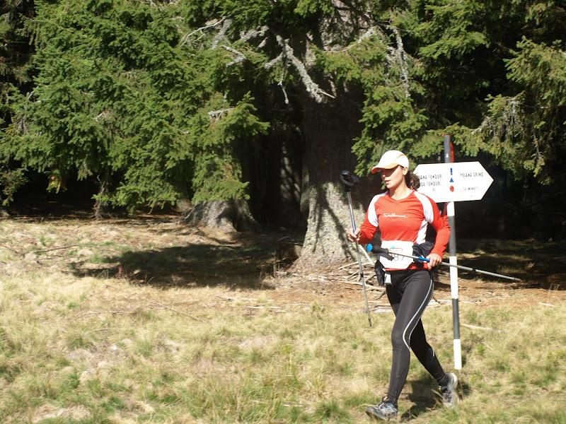 Maratonul Pietrei Craiului 2012
