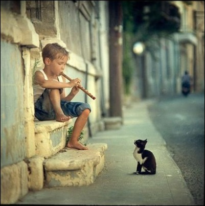 Pied Piper in Training