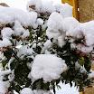 150119-nieve-sotosalbos(4).jpg