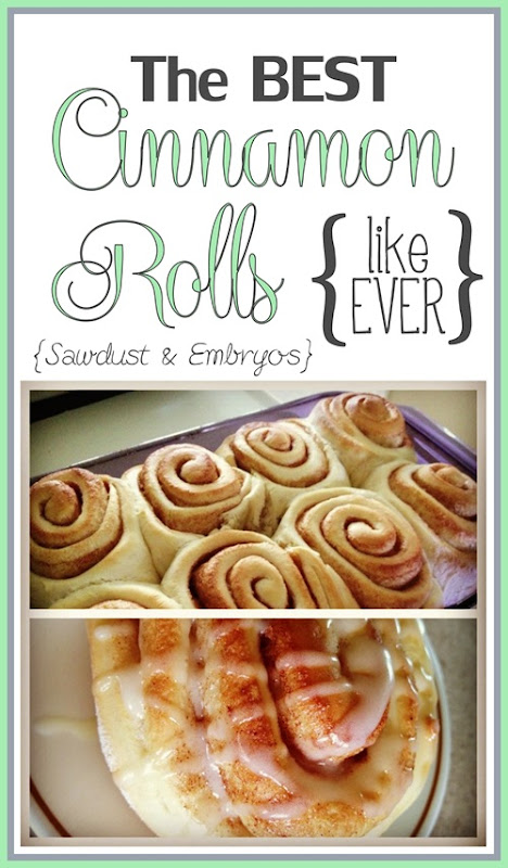 The BEST Homemade Cinnamon Rolls {Sawdust and Embryos}