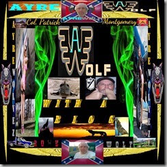 wolf with a blog mini cover