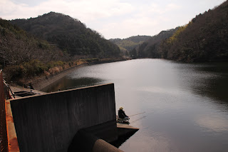 導流壁とダム湖を望む