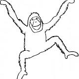 orangutan-4-coloring-page.jpg