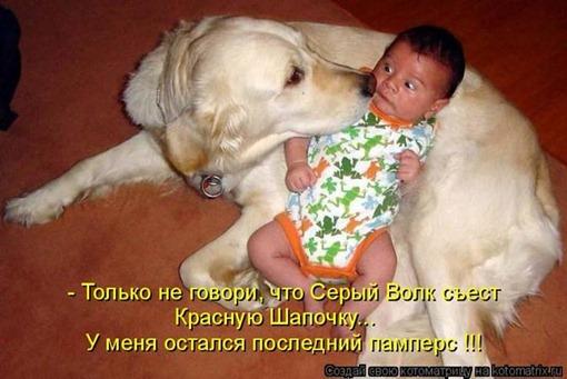Детеныш и собака