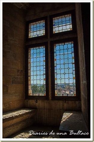 Avignon-24