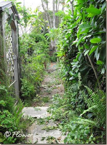 07-17-path-trim5