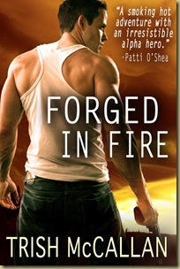 Forged-in-Fire cover