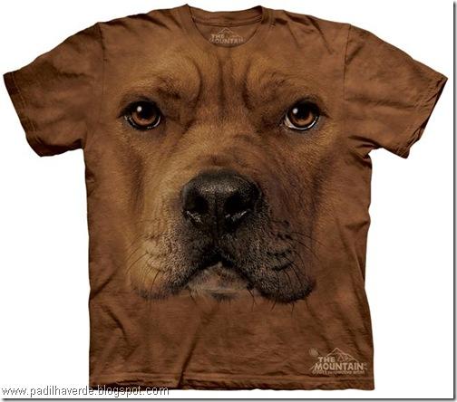 camisetas de Montain-2