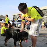 Pet Express Doggie Run 2012 Philippines. Jpg (260).JPG