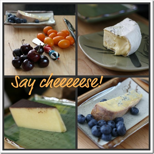 cheese_collage