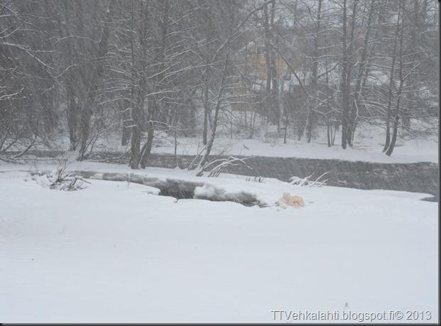 myllykoski jälkiä lumessa 015