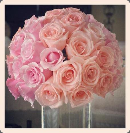 556280_335297353212749_1515368766_n hacman floral