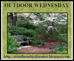 [Outdoor-Wednesday-button_thumb1_thum%255B2%255D.png]