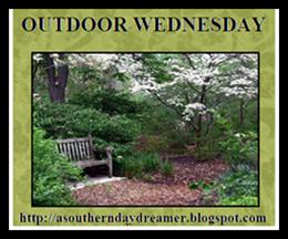 Outdoor-Wednesday-logo_thumb4_thumb1