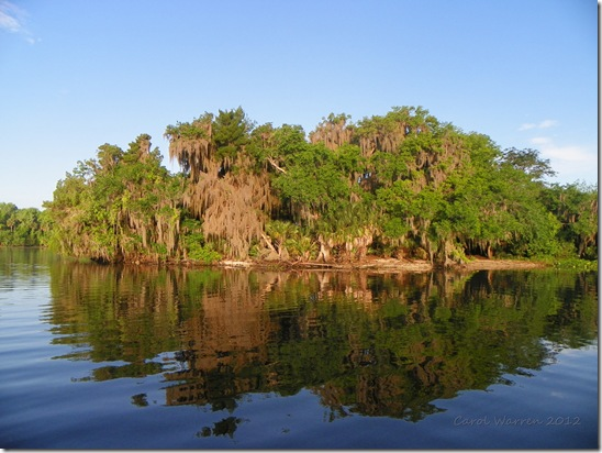 St Johns River 004cs