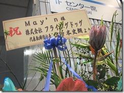 nov11_Japan 071