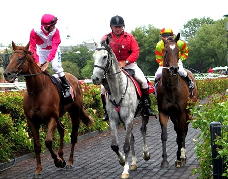 race 7 _lightning_lankan rupee 3