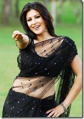 Karishma-Kotak-hot-saree-navel