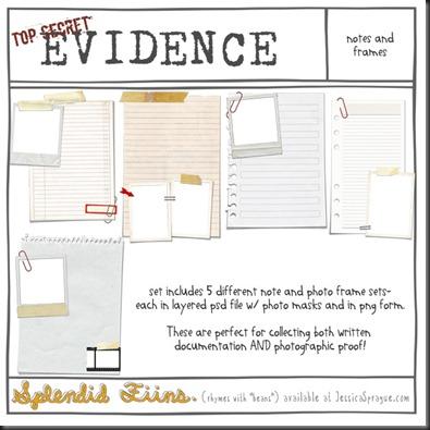 SF_evidence-notesandframes