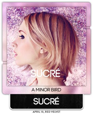 A Minor Bird by Sucré