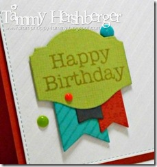 Color Throwdown #305 close-up by Tammy Hershberger