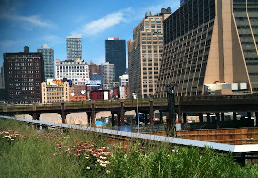 A view of uptown from the High Line.