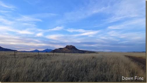 San Rafael Grasslands_037