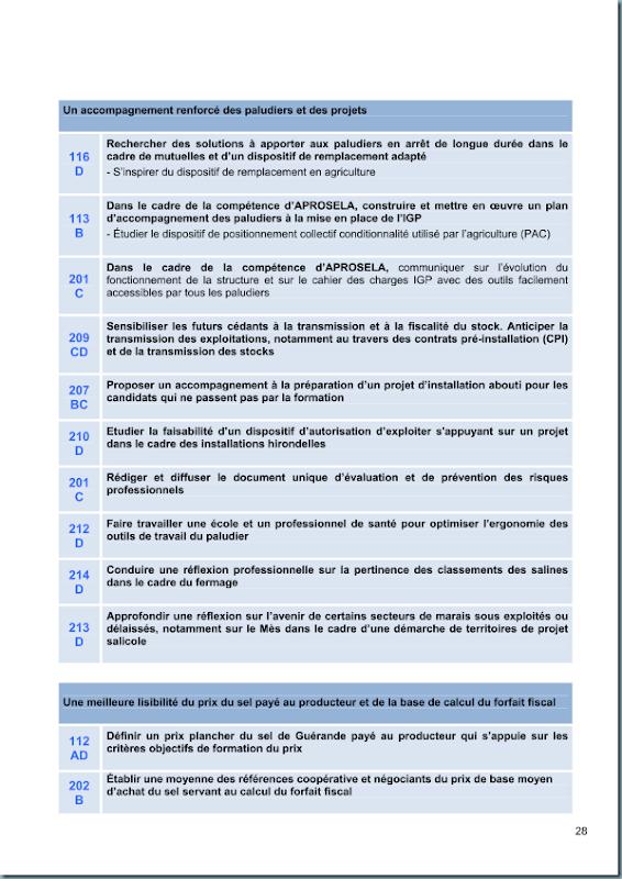 diagnostic_salicole_ca44_2011_page_029