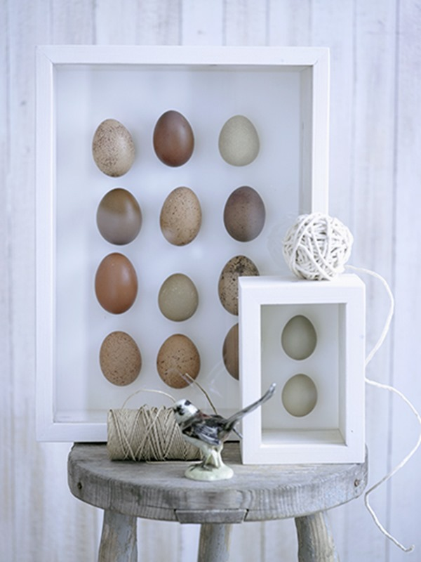 Eggs in a Frame