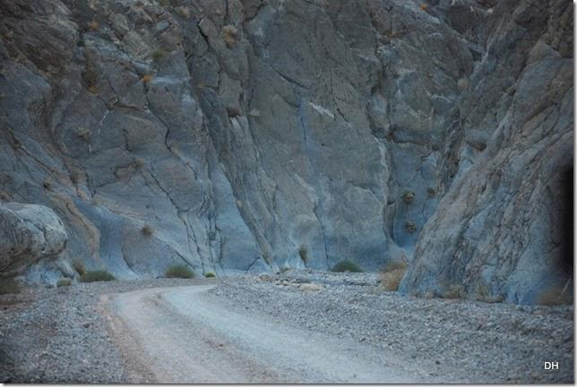 11-08-13 A DV 4x4 Titus Canyon Road (451)