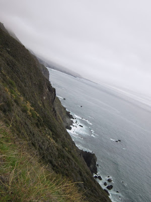 views along Highway 1