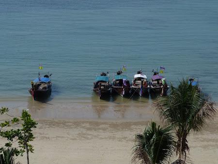 17. barci pescaresti.JPG