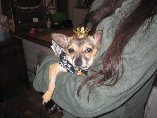 While Minnow loved Boots's crown, she settled on a more understated version. After all, she did not want to steal the spotlight from her gracious hostess.