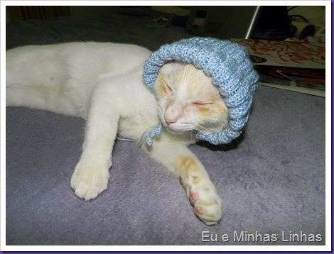Touca para Gato3