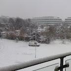 Snowfall 2009