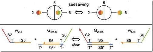 seesaw-rx