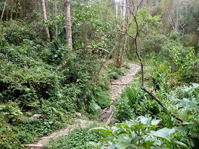 Colombia, Caminos Reales: Tena - Bojacá