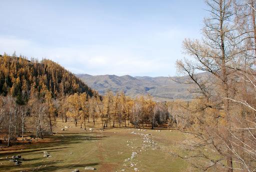 Xinjiang, Baihaba - Vallée
